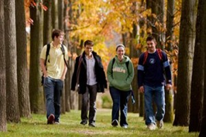 University students walking among maple trees in Canada.
